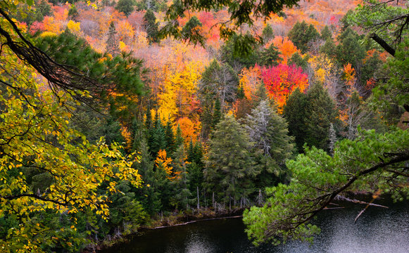 Jack Lake: As seen from Hemlock Bluffs trail in Algonquin Provincial Park, Canada
