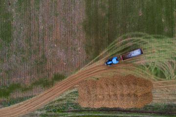 Récolte de la betterave dans le vexin français / Beet harvesting