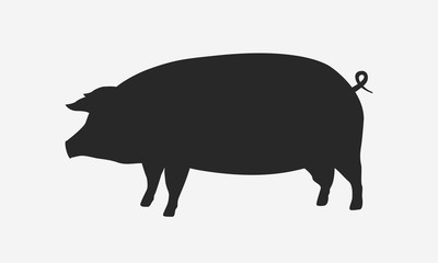 Pig silhouette isolated on white background. Vector pig icon.