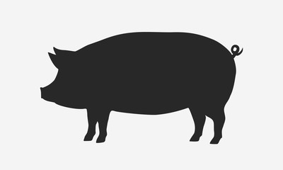 Vector pig silhouette. Pig silhouette icon isolated on white background.