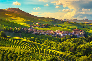In de dag Wijngaard Langhe vineyards panorama, Barolo village, Piedmont, Italy Europe.
