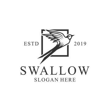 Vintage Flying swallow bird logo business design template vector illustration