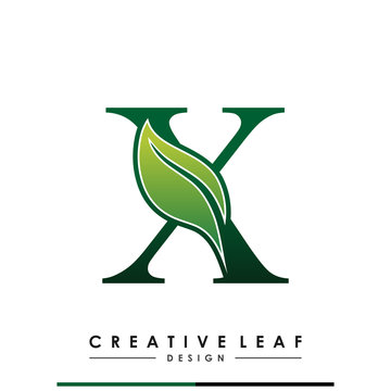 Initial Letter X With Leaf Luxury Logo. Green leaf logo Template vector Design.