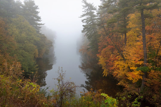 Foggy morning with fall leaves reflecting in the river