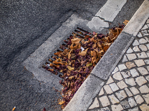 Obstructed gutter on road with falled leaves at autumn