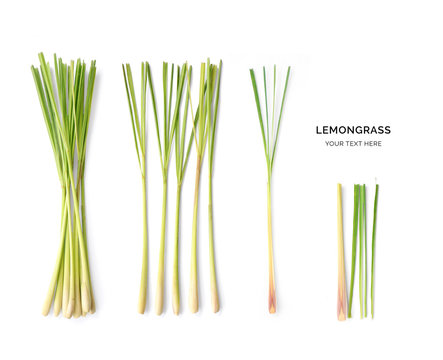 Creative layout made of lemongrass. Flat lay. Food concept. Macro concept.
