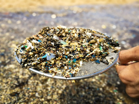 Microplastics are very small pieces of plastic that pollute the environment.