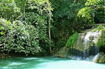 Bosque tropical en las cascadas de Erawan, Kanchanaburi, Tailandia. Wall mural