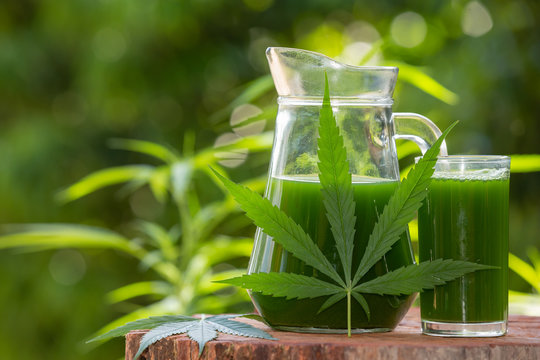 Smoothie cannabis juice that is placed on a wooden floor and has a natural green background.