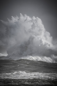 Tempête, vagues puissantes, grosse houle, submersion