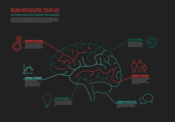 Multipurpose infographic template with human brain