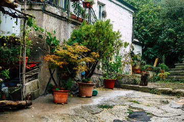Canvas Prints Narrow alley View of the house at the medieval village of Calcata