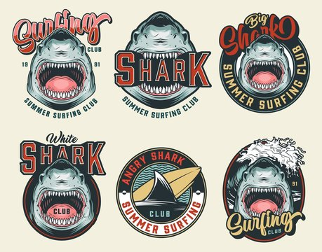 Colorful vintage surfing club badges