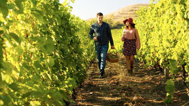 Couple walking in a vineyard with glasses of wine in hands
