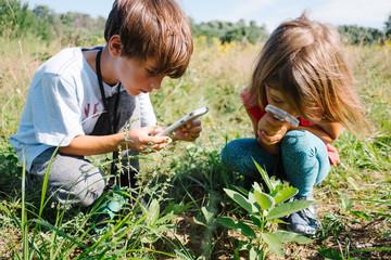 children observe caterpillars