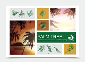 Wall Mural - Tropical Natural Elements Composition
