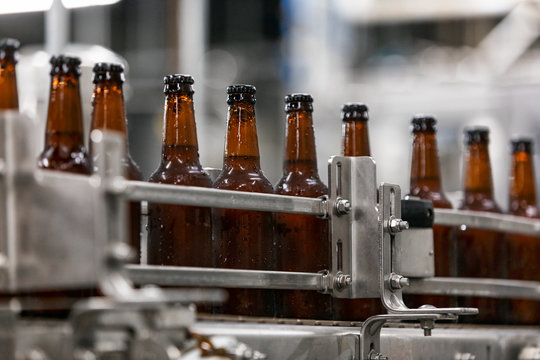 Brewery: Filled And Capped Beer Bottles On Production Line