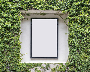 ivy wall frame for poster