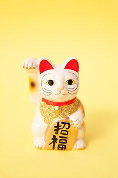 Maneki Neko good fortune or Japanese lucky cat on yellow background