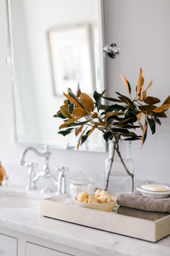 Magnolia branches in modern bathroom