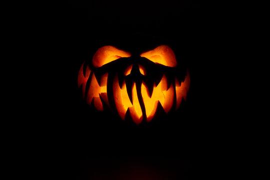 Real Jack O Lantern for halloween
