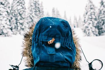 Hood of Anonymous Arctic Explorer