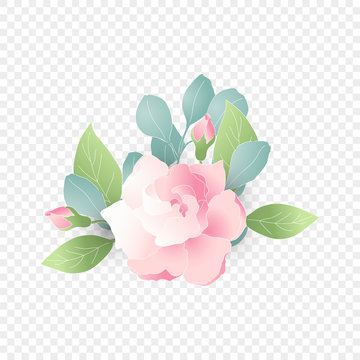 Isolated pink flower composition