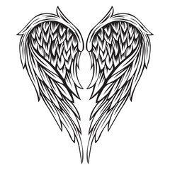 Wings Bird Black & White Vector Illustrator 555