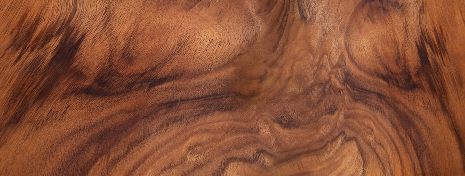 The background skin material. Beautiful natural wood-1