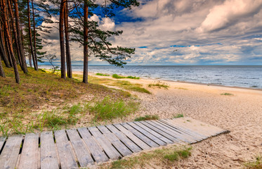 Pine forest, wooden footpath and a sandy beach of the Baltic Sea, concept of ecologically clean tourism and protection of climate of our planet
