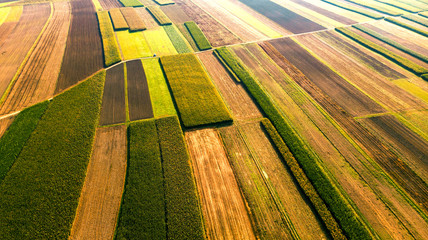 Fototapeta Colorful Farm Fields with Crop. Abstract Patterns. Aerial Drone view obraz