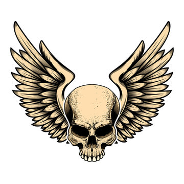 Illustration of winged skull in tattoo style isolated on white background. Design element for logo, label, badge, sign. Vector illustration
