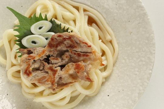 Japanese food, grilled pork and cold udon noodles
