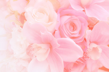 Blurred of rose flowers pink blooming. in the pastel color style for background. Stained glass pictures
