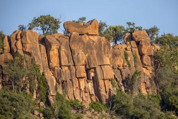 Wall Mural - Rhyolitic rocky outcrop or koppie