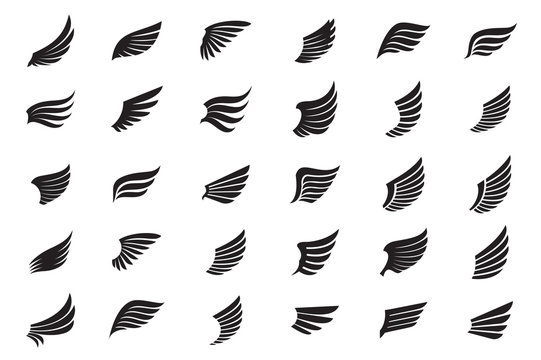 Big Collection of white Wings. Vector Illustration and outline Icons.
