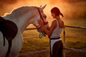 Girl with hourse. Woman and her horse on a sunset.