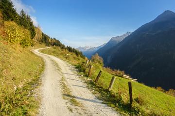 Wall Mural - fantastischer Mountainbiketrail in den herbstlichen Bergen des Zillertals in Tirol