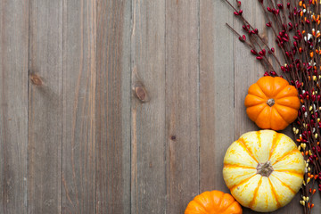 Autumn Thanksgiving Colorful Setting Background