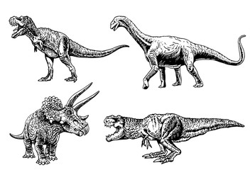 Graphical set of dinosaurs isolated on white background,vector illustration Wall mural