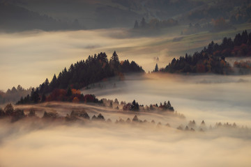Poster Gray Pieniny foggy sunrise