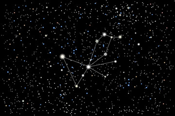 Vector illustration of the constellation Pavo (Peacock) on a starry black sky background. The astronomical cluster of stars in the Southern Celestial Hemisphere