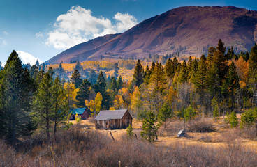 Cozy Cabin in Fall, Hope Valley, Sierra Nevadas