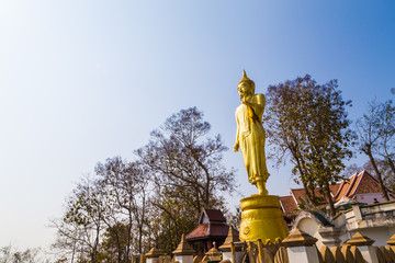 Fotomurales - Golden buddha statue stand on mountain temple look to city