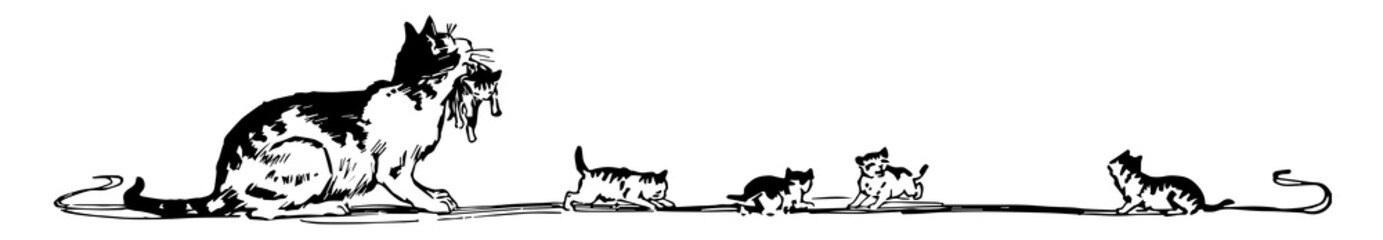 Cat Banner have a mother cat and her kittens, vintage engraving.