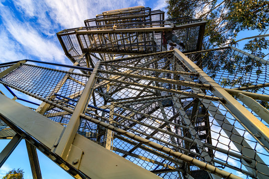 mt. Donna Buang observation tower