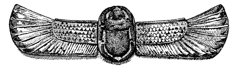 Scarab is a common motive in Egyptian art, vintage engraving.
