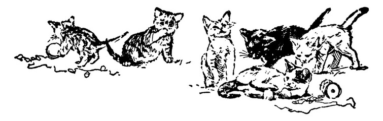 Six Cats, vintage illustration.