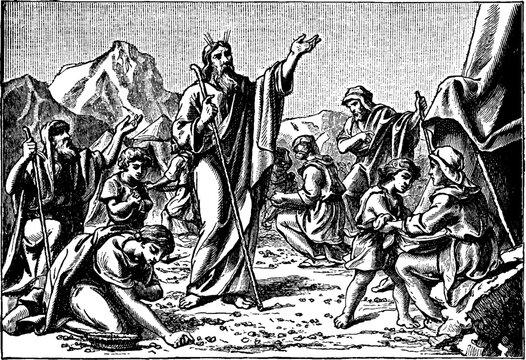 The Israelites Gather Manna Sent by God vintage illustration.