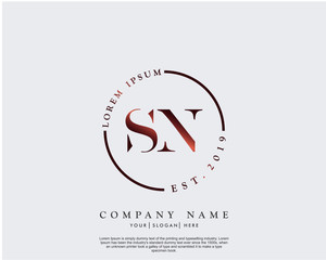 Initial letter SN beauty handwriting logo vector